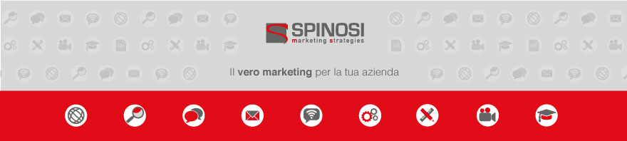 consulenza marketing strategico | operativo | spinosi interno