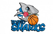 I Roseto Sharks scelgono Spinosi per il marketing sportivo
